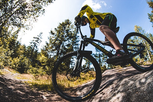 mountain bike under $500 review