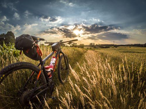 gravel bike under $2,000 review